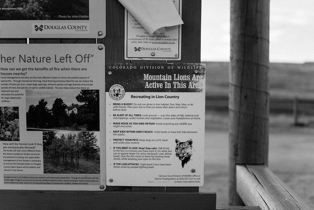 Mountain Lion Warning Sign Colorado