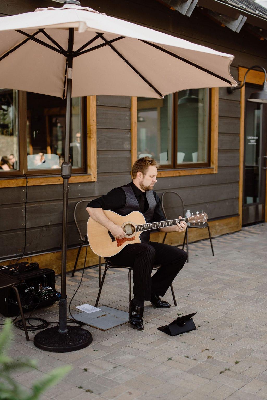 Wedding Acoustic Musician