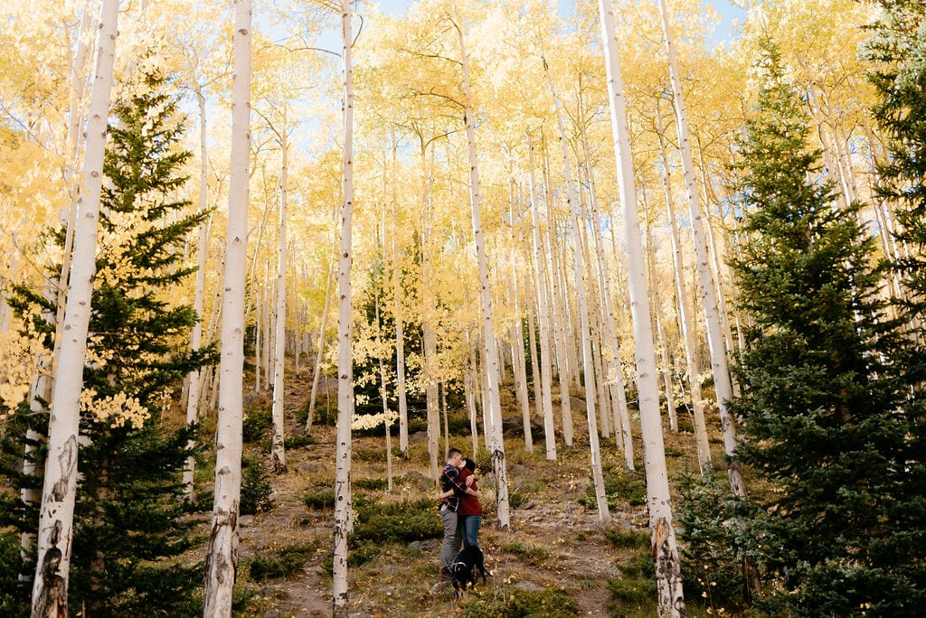 Fall Colors Engagement Session