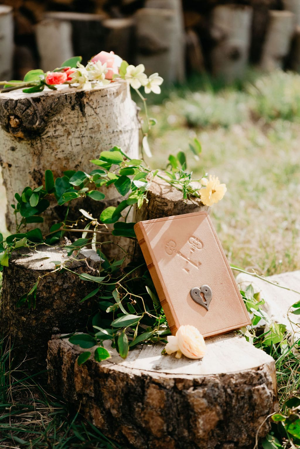Beautiful Vow book on aspen stumps for wedding ceremony