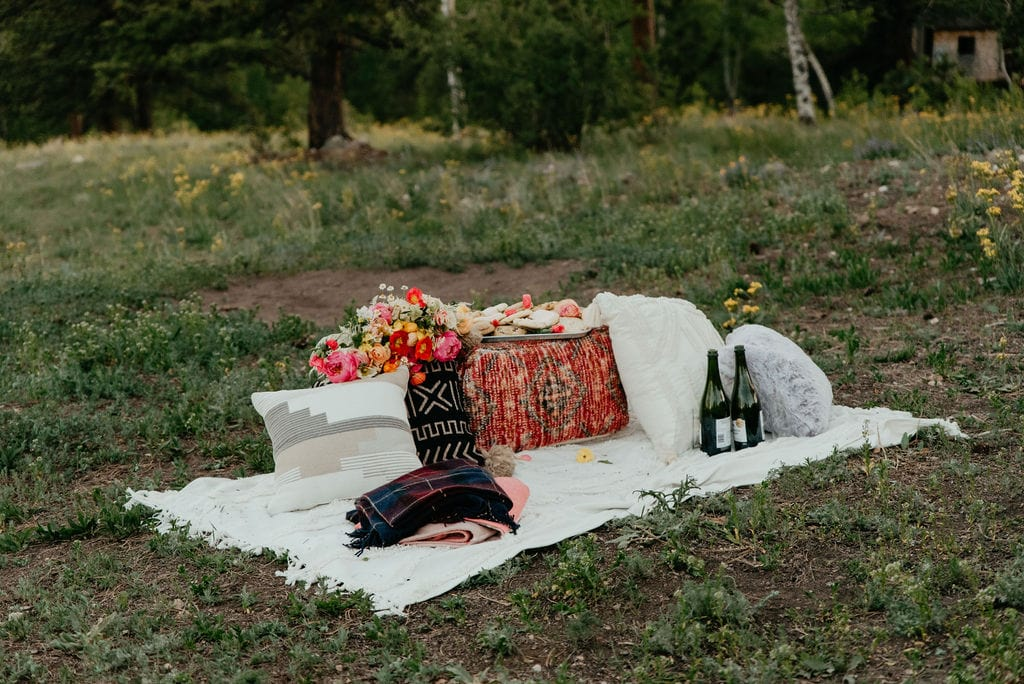 Picnic set up for your elopement with cookies and champagne